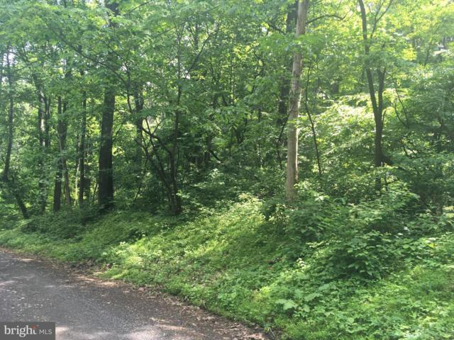 Lot 112 High Top Road, LINDEN, VA 22642 (#VAWR137048) :: Circadian Realty Group
