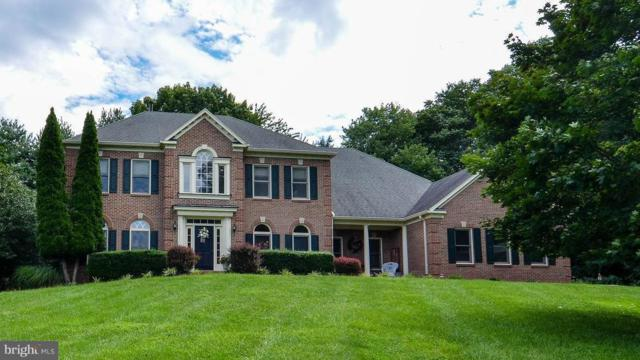 17425 Avenleigh Drive, ASHTON, MD 20861 (#MDMC662530) :: The Maryland Group of Long & Foster Real Estate