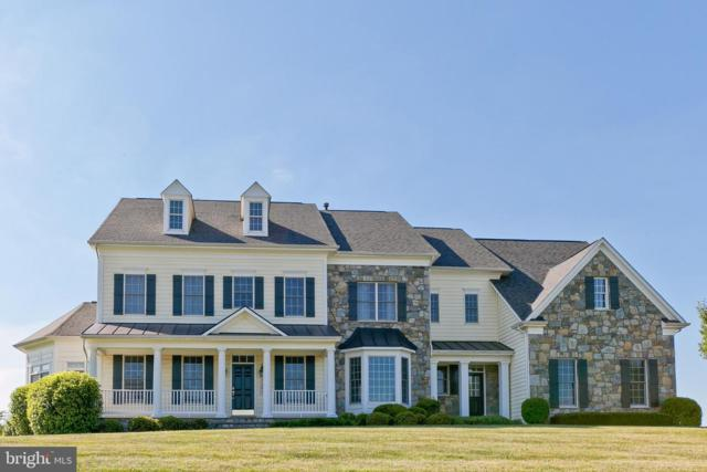 6802 Southridge Way, MIDDLETOWN, MD 21769 (#MDFR247676) :: The Gus Anthony Team