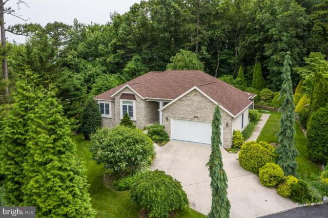 6185 Greenbriar Terrace, FAYETTEVILLE, PA 17222 (#PAFL166104) :: Teampete Realty Services, Inc