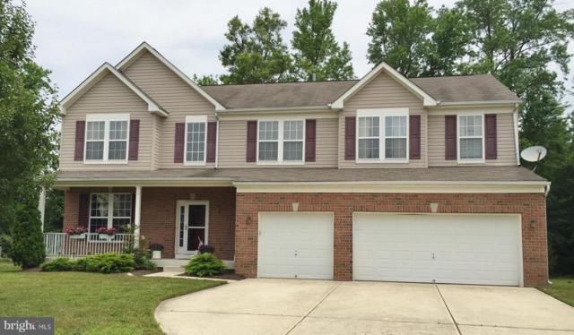 1239 Painted Fern Road, DENTON, MD 21629 (#MDCM122428) :: The Miller Team