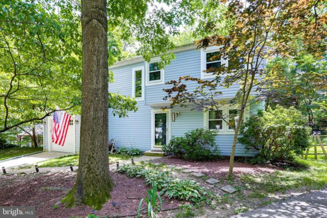 9585 Castile Court, COLUMBIA, MD 21045 (#MDHW265004) :: The Maryland Group of Long & Foster