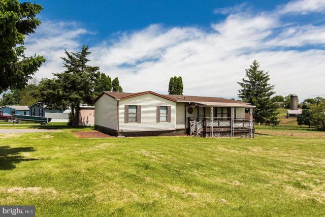 22 Terrie Lane, EAST EARL, PA 17519 (#PALA133878) :: The Joy Daniels Real Estate Group