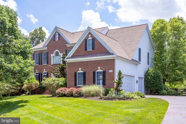 24124 Heather Hill Place, ALDIE, VA 20105 (#VALO386134) :: Dart Homes