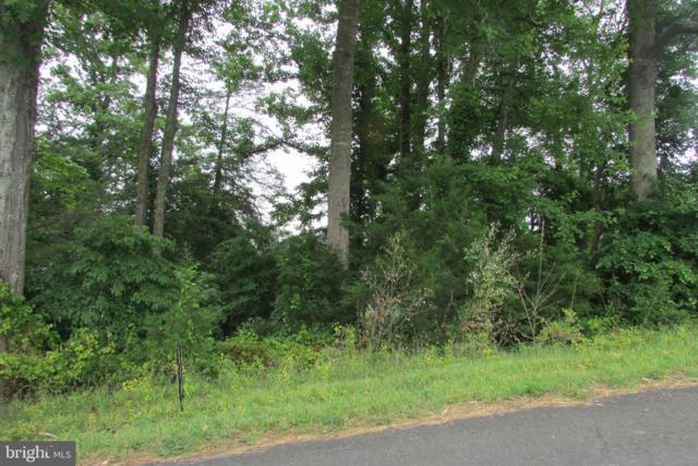 0 Korea Road, AMISSVILLE, VA 20106 (#VACU138584) :: Pearson Smith Realty