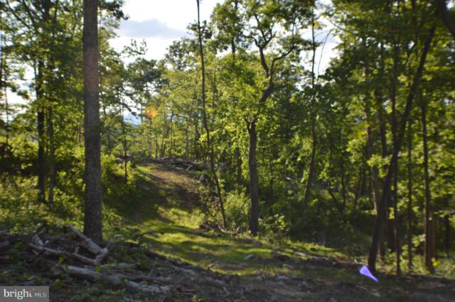 Lot 3 Deep Spring Road, PETERSBURG, WV 26847 (#WVGT102874) :: Hill Crest Realty