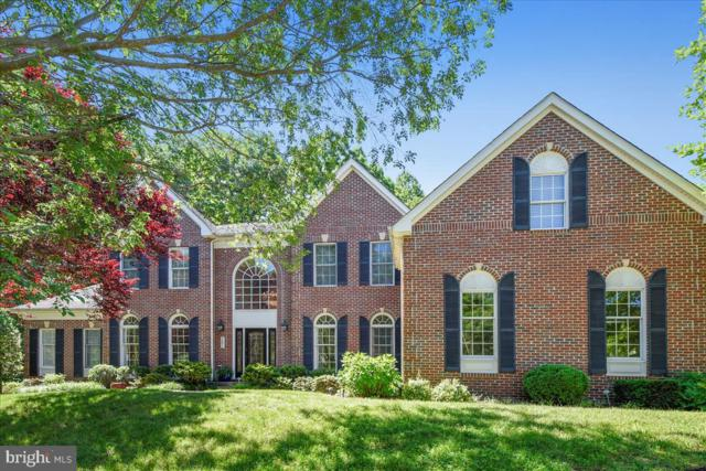301 Gray Dragon Place, EDGEWATER, MD 21037 (#MDAA402406) :: Radiant Home Group