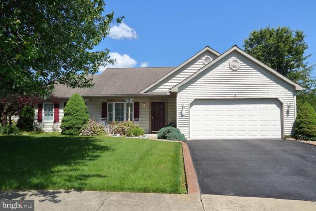 14 Brookside Circle, MYERSTOWN, PA 17067 (#PALN107304) :: The Joy Daniels Real Estate Group