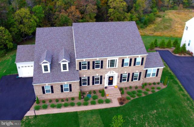 42472 Reservoir Ridge Place, ASHBURN, VA 20148 (#VALO386224) :: The Greg Wells Team