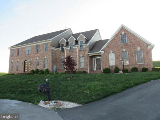 123 Chateau Circle, WRIGHTSVILLE, PA 17368 (#PAYK118294) :: Flinchbaugh & Associates