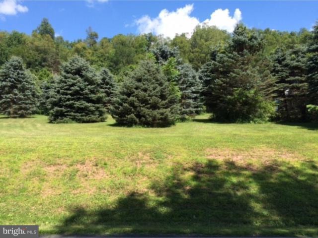 0 W Deer View Drive, AUBURN, PA 17922 (#PASK126226) :: Ramus Realty Group