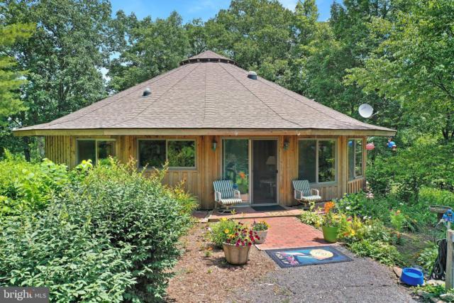23301 Mountain Knight Road, OLDTOWN, MD 21555 (#MDAL131878) :: Keller Williams Pat Hiban Real Estate Group