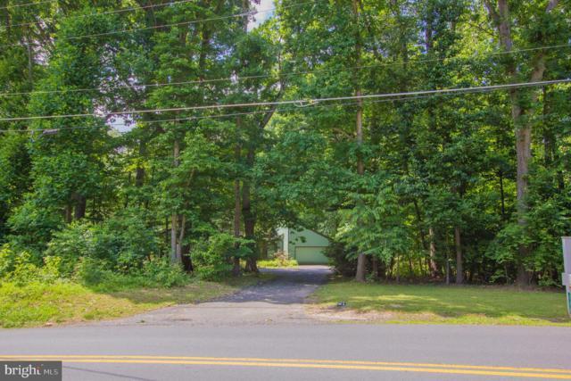 526 Springvale Road, GREAT FALLS, VA 22066 (#VAFX1068540) :: Great Falls Great Homes