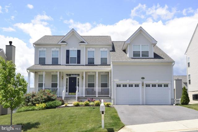 36071 Welland Drive, ROUND HILL, VA 20141 (#VALO386532) :: Circadian Realty Group