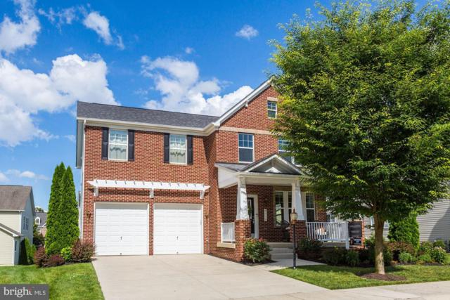 2115 George Boiardi Lane, ANNAPOLIS, MD 21401 (#MDAA402906) :: The Sebeck Team of RE/MAX Preferred