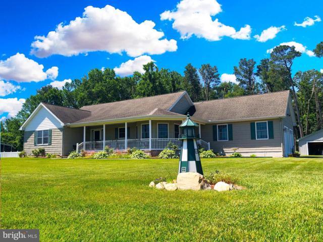 127 S Paula Lynne Drive, SEAFORD, DE 19973 (#DESU141942) :: Shamrock Realty Group, Inc
