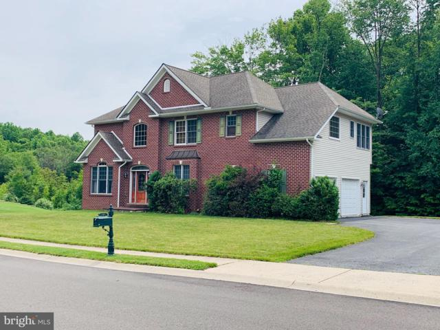 207 Norwegian Woods Drive, POTTSVILLE, PA 17901 (#PASK126268) :: The Heather Neidlinger Team With Berkshire Hathaway HomeServices Homesale Realty