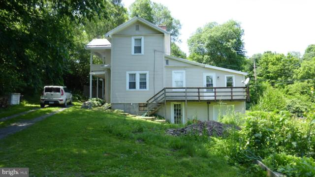 9138 State Route 259, LOST CITY, WV 26810 (#WVHD105192) :: AJ Team Realty