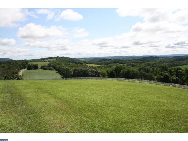 0 Heidelberg Heights Lane, BERNVILLE, PA 19506 (#PABK342824) :: Ramus Realty Group