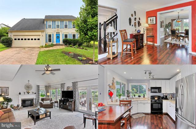 10169 Corydalis Court, MANASSAS, VA 20110 (#VAMN137332) :: Pearson Smith Realty