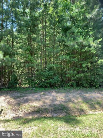 Lot 360 Winchester Trail, MINERAL, VA 23117 (#VALA119364) :: Bruce & Tanya and Associates