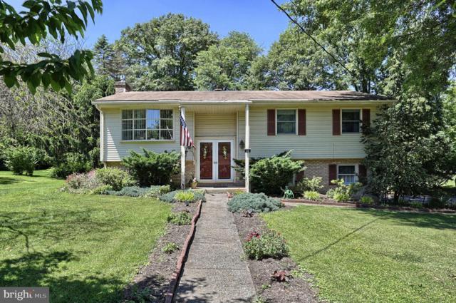 85 Ridgeview Road, HUMMELSTOWN, PA 17036 (#PADA111516) :: Liz Hamberger Real Estate Team of KW Keystone Realty