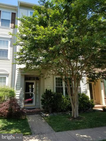 42814 Cedar Hedge Street, CHANTILLY, VA 20152 (#VALO386800) :: LoCoMusings