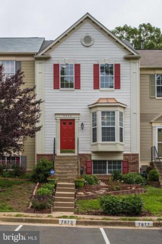 7873 Rebel Walk Drive, MANASSAS, VA 20109 (#VAPW470588) :: Arlington Realty, Inc.