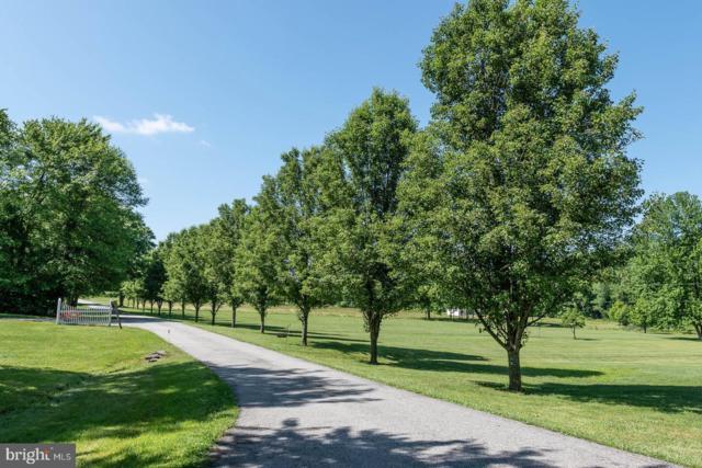 39 Starling Lane, ELKTON, MD 21921 (#MDCC164654) :: LoCoMusings