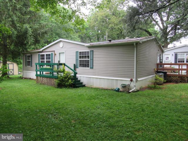 764 Azalea Lane, GAP, PA 17527 (#PALA134404) :: The Joy Daniels Real Estate Group
