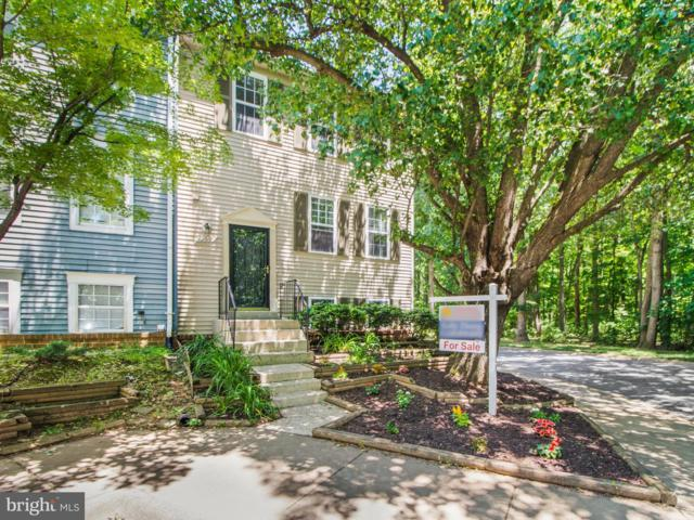 12917 Climbing Ivy Drive, GERMANTOWN, MD 20874 (#MDMC664008) :: ExecuHome Realty