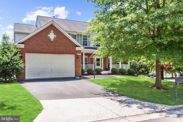 225 Pinnacle Court, WARRENTON, VA 20186 (#VAFQ160810) :: Jacobs & Co. Real Estate