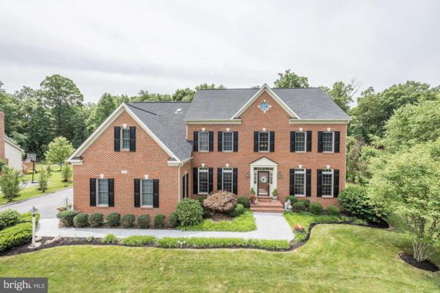 40420 Lenah Run Circle, ALDIE, VA 20105 (#VALO386986) :: The Miller Team