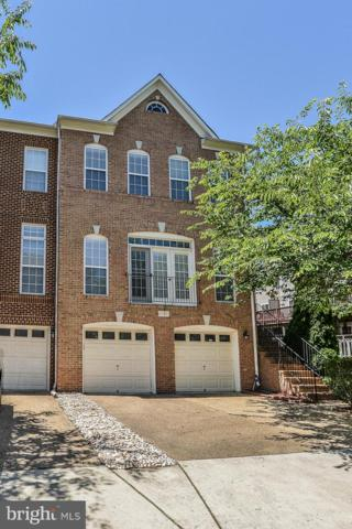 21891 Schenley Terrace, BROADLANDS, VA 20148 (#VALO386994) :: The Greg Wells Team