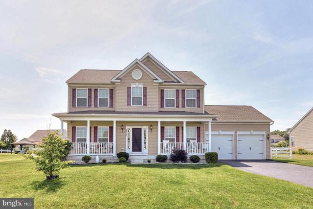 24782 Shoreline Drive, MILLSBORO, DE 19966 (#DESU142244) :: The Allison Stine Team
