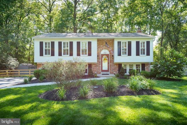 5407 Fantail Drive, SYKESVILLE, MD 21784 (#MDCR189350) :: RE/MAX Plus