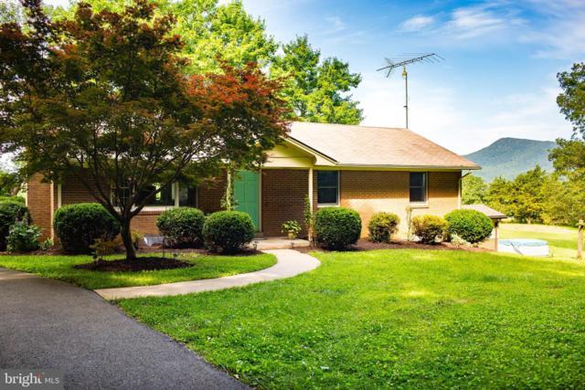 338 Springfield Estates Drive, RILEYVILLE, VA 22650 (#VAPA104518) :: The Licata Group/Keller Williams Realty
