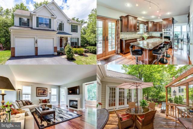 43221 Darkwoods Street, CHANTILLY, VA 20152 (#VALO387062) :: Labrador Real Estate Team