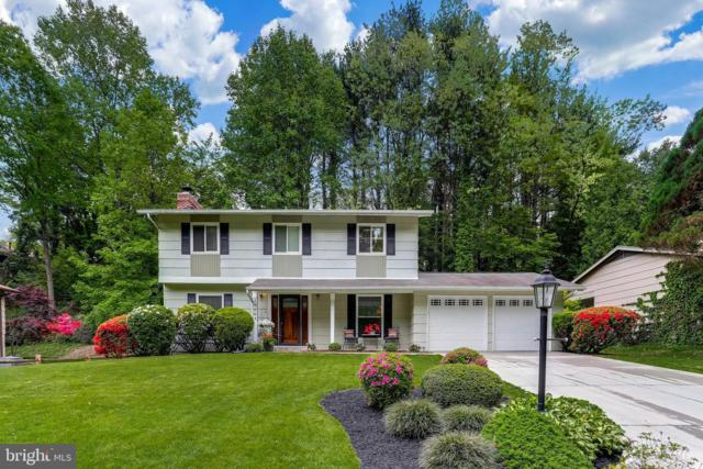 10663 Green Mountain Circle, COLUMBIA, MD 21044 (#MDHW265644) :: The Redux Group