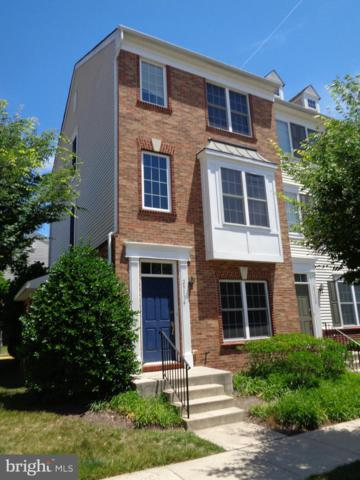 25136 Monteith Terrace, CHANTILLY, VA 20152 (#VALO387108) :: LoCoMusings