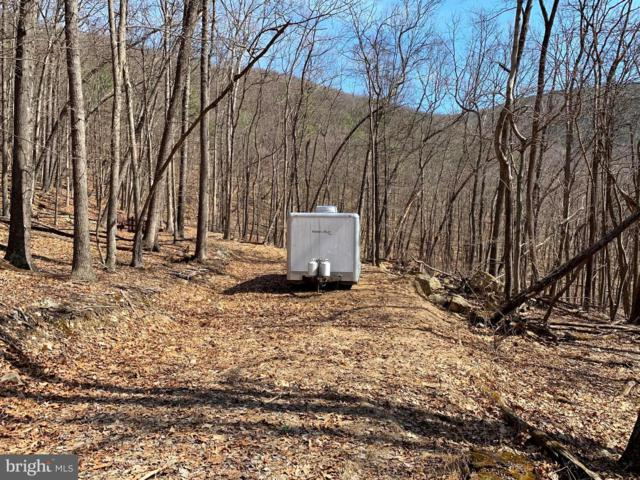 Wilson Run Trail, MILAM, WV 26838 (#WVHD105212) :: LoCoMusings