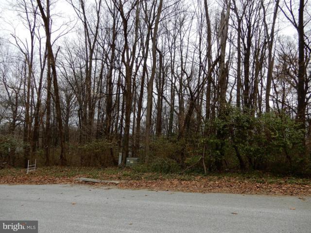Marlow Drive, YORK, PA 17402 (#PAYK118898) :: LoCoMusings