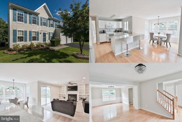 17390 Arrowood Place, ROUND HILL, VA 20141 (#VALO387140) :: Bruce & Tanya and Associates