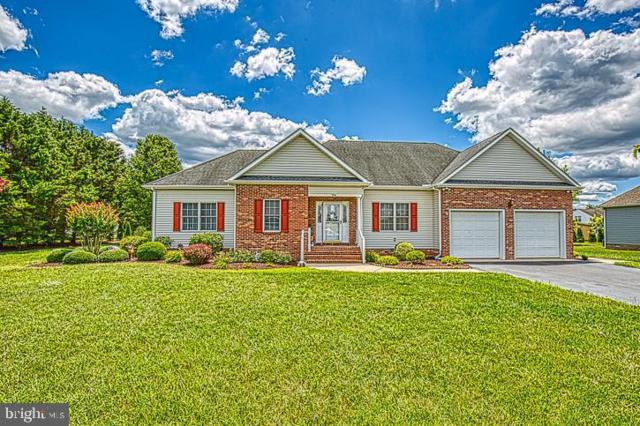 194 Nina Lane, FRUITLAND, MD 21826 (#MDWC103818) :: Dart Homes