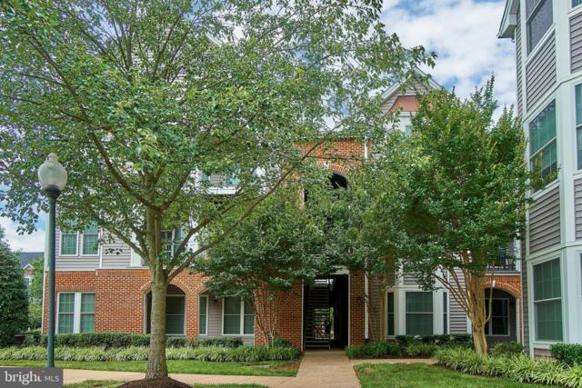 20419 Riverbend Square #202, STERLING, VA 20165 (#VALO387154) :: Great Falls Great Homes