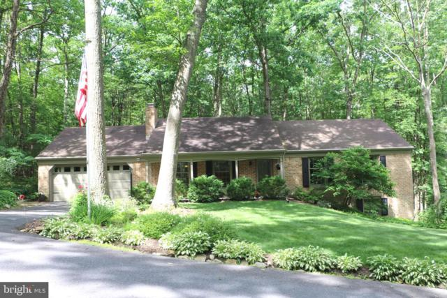 95 Laurel Drive, FAYETTEVILLE, PA 17222 (#PAFL166376) :: The Gus Anthony Team
