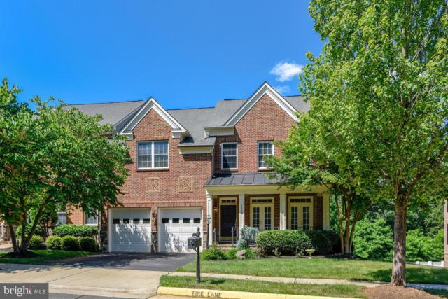 43586 Merchant Mill Terrace, LEESBURG, VA 20176 (#VALO387184) :: The Redux Group