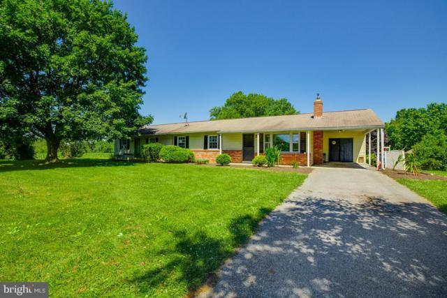 28420 Woodview Drive, DAMASCUS, MD 20872 (#MDMC664692) :: The Sebeck Team of RE/MAX Preferred