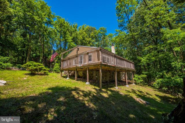 618 Roberts Lane, GREAT CACAPON, WV 25422 (#WVMO115506) :: The Maryland Group of Long & Foster Real Estate