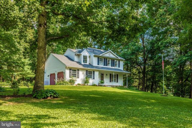 5211 Sidney Road, MOUNT AIRY, MD 21771 (#MDFR248428) :: Dart Homes